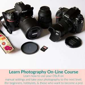 Learn Photography Online course cover